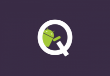 Android Q, Anrdoid 10